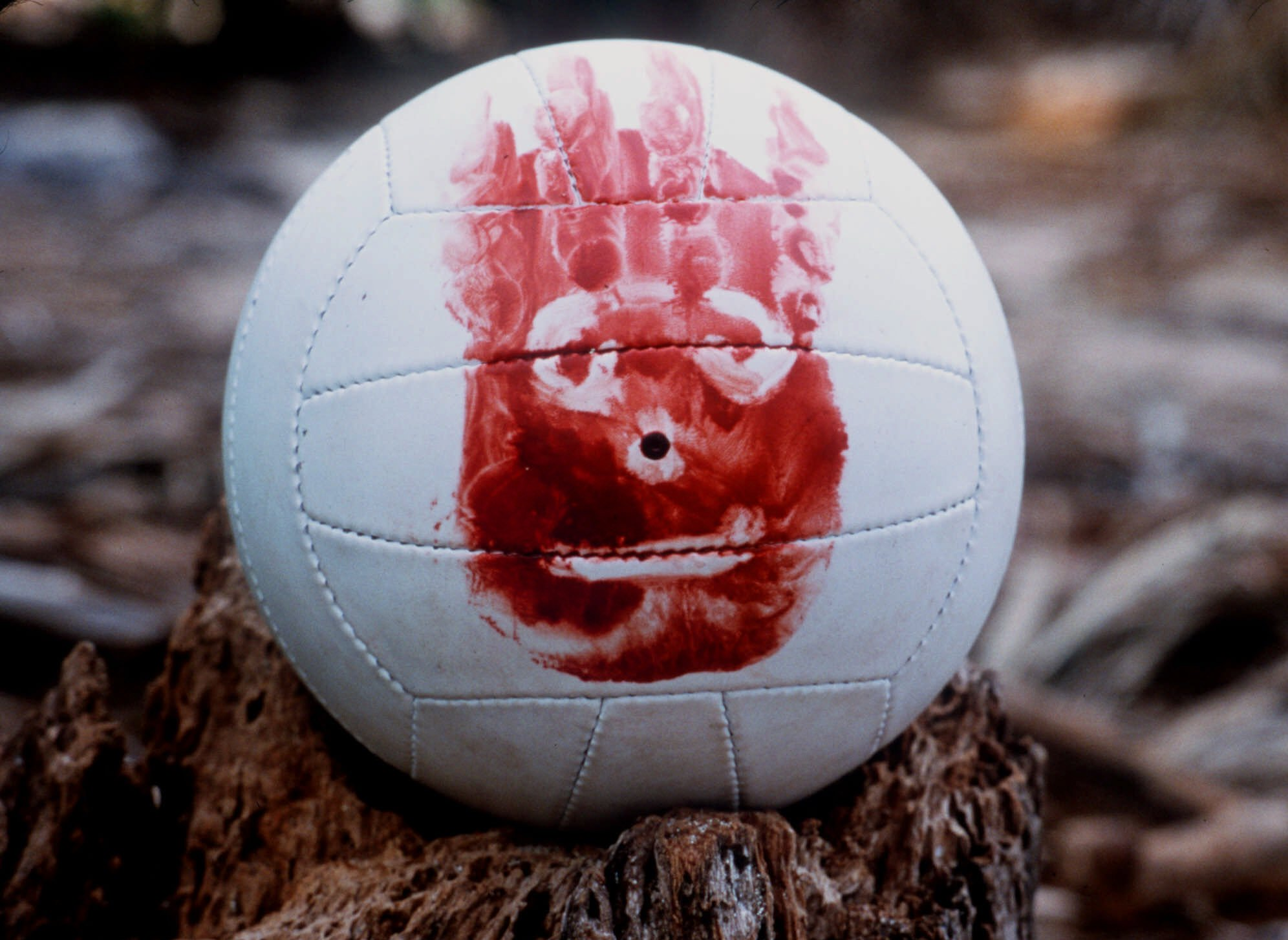 cast-away-wilson-volleyball1.jpg